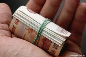В Петербурге посадили создателей финансовой пирамиды