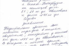 Жителям Невского района надоели проститутки