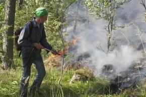 Петербуржцы тушат «русские фьорды» за свой счет