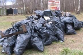 «Наши» убирают Химкинский лес и собираются на митинг