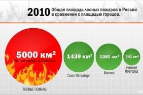 Площадь лесных пожаров снова растет