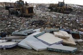 У Гладкого посёлка может появиться новый мусорный полигон