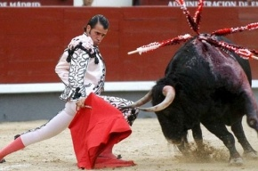 В Каталонии запретили корриду