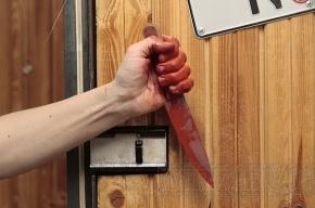 Тройное убийство в Петербурге раскрыто