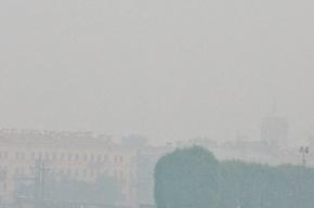 Откуда дым в Петербурге?