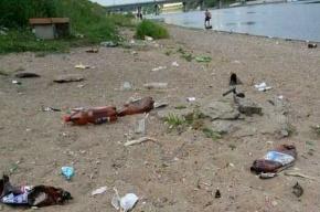 Самый грязный пляж Петербурга находится на Канонерском острове