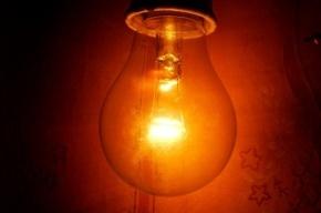 Больше 1000 домов в Петербурге остались без света
