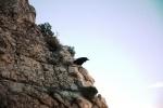 Чудо природы: Фоторепортаж