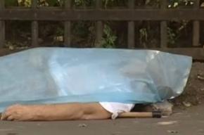 Убитый в Москве грузин оказался экс-замглавы МВД Аджарии