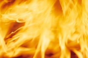 В Москве горели гаражные боксы. Пострадали автомобили
