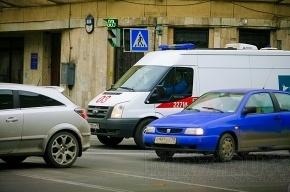 В Невском районе двое мужчин избили женщину из-за ее собаки