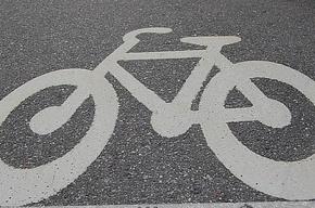 Друзья разыскивают водителя, сбившего велосипедистку напротив Смоленского кладбища