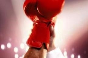 Сборная Петербурга по боксу завоевала 6 медалей на чемпионате России