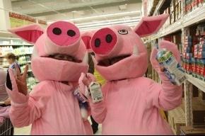 «Хрюши» борются со свинством магазинов