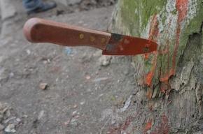 Старик зарезал женщину в лесу из-за грибов