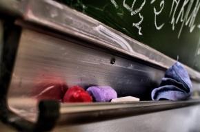 Петербургская учительница призналась в нанесении побоев третьекласснику