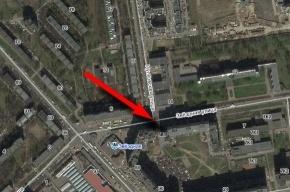 У метро «Звездная» пешеходы игнорируют «зебру»