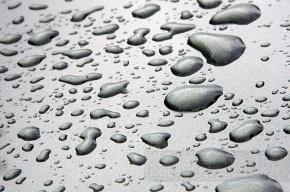 В Ленобласти завтра будет идти сильный дождь