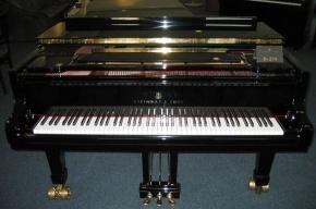 Петербурженка доигралась на фортепиано до уголовного дела