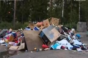 Еще одна свалка гуманитарной помощи – под Петербургом