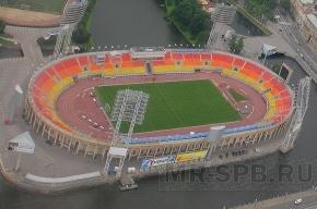 На стадионе «Петровский» посадят деревья