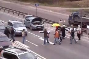 На обманутых дольщиков напали недовольные автомобилисты