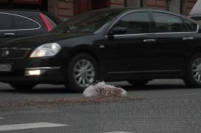 Кто потерял мешки с керамзитом на Марата?