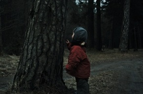 Под Киевом 800 человек не зря искали пропавшего в лесу мальчика