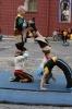 В Павловск приедет Упсала-цирк: Фоторепортаж