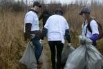 Экологи продолжают наводить порядок: Фоторепортаж