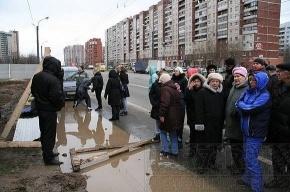 Жители Комендантского проспекта против «стекляшки» под окнами