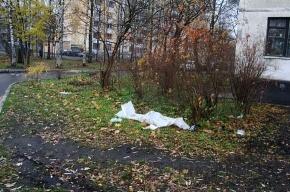 Финляндский округ: чистота только на бумаге