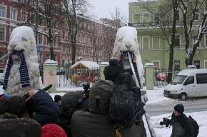 Фанаты «Зенита» надели шарфы на львов