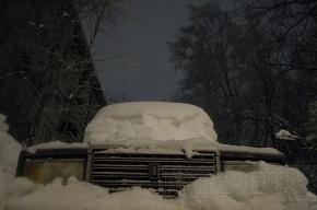 В Ленобласти ожидается снегопад с сильным ветром