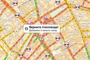 «Верните пчеловода», или что говорят москвичи в пробках