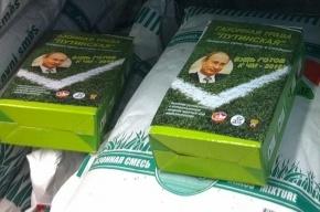 Петербургский продавец семян: трава «Путинская» - контрафакт