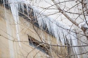Ледовые баталии в Центральном районе