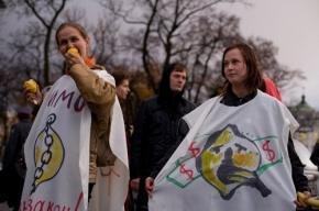 Пойдет ли Юлия Минутина в КГИОП? Решение принято
