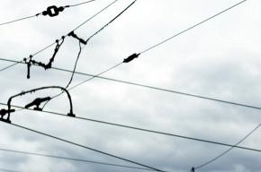 Новый трамвайный маршрут появился в Невском районе