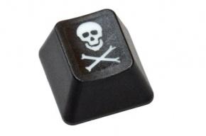 А ты уже стал интернет-пиратом?