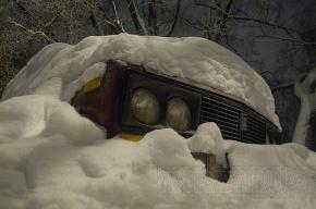 МЧС: в Ленобласти будет туман и снегопад