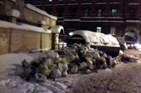 На улице Писарева неделю лежит куча мусора