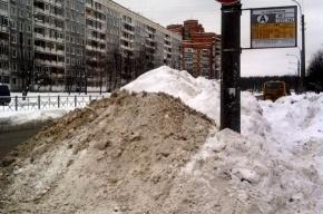 На проспекте Художников остановку утопили в снегу