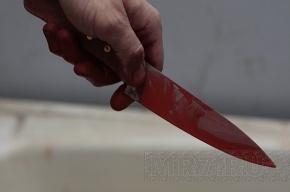 В центре Петербурга убиты супруги, двухлетний ребенок жив