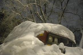 МЧС: в Ленобласти будет снежная буря