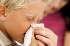 Петербург на грани эпидемии гриппа