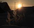 Фоторепортаж: «В области похолодало и деревни приобрели сказочный вид»