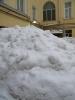 Жителям дома на Невском объясняют, что вывозить снег со двора экономически невыгодно: Фоторепортаж