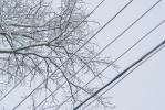 Провода облепляет снег. Поставьте мобильники на зарядку!: Фоторепортаж