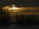 Солнечное затмение: как это было (фото): Фоторепортаж